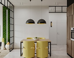 Kuchnia+-+zdj%C4%99cie+od+SHAFIEVA+DESIGN