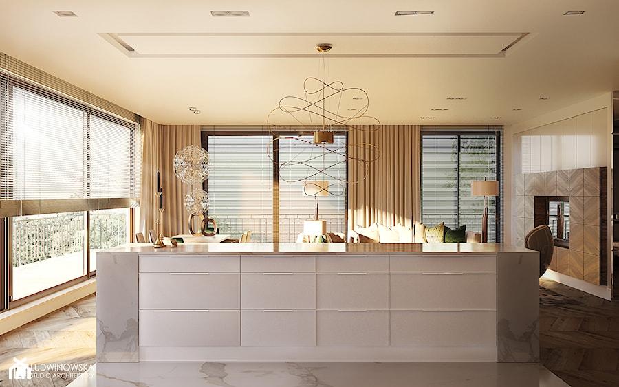 Kuchnia Art Deco Nowoczesna Przytulna Zdjęcie Od