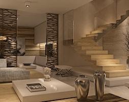 Limba+Noir+-+zdj%C4%99cie+od+Ludwinowska+Studio+Architektury