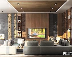salon, duża sofa, sofa modułowa, cegła, kominek trójstronny, zabudowa tv, lampy stojące, sufit drewno, deski na suficie, regały w ścianie, oryginalne regały, spiek kwarcowy, laminam, piękne lampy - zdjęcie od Ludwinowska Studio Architektury