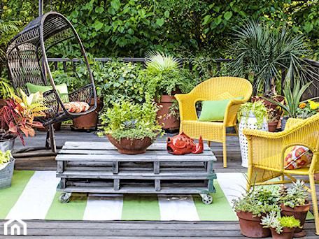 Aranżacje wnętrz - Taras: small garden - Mały taras z przodu domu z tyłu domu rustykalny - Marzena. Przeglądaj, dodawaj i zapisuj najlepsze zdjęcia, pomysły i inspiracje designerskie. W bazie mamy już prawie milion fotografii!