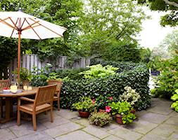 small garden - Średni taras z przodu domu z tyłu domu - zdjęcie od Marzena