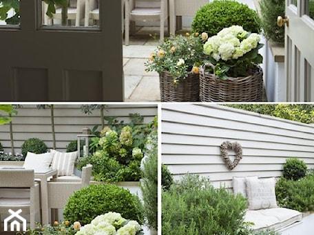 small garden - Średni taras z tyłu domu - zdjęcie od Marzena