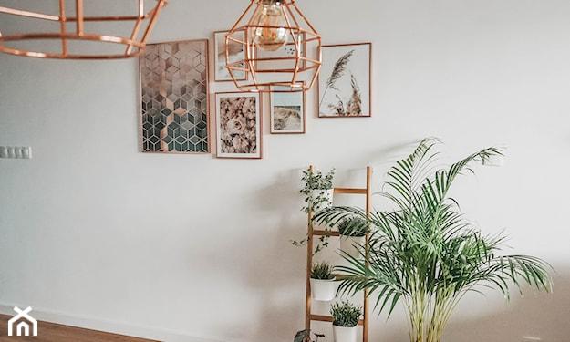 rośliny w salonie