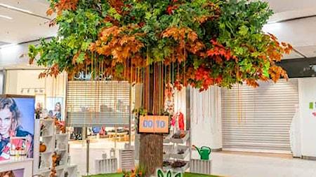 Producent Sztucznych Drzew firma ORCHIDEA