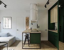 Salon+z+aneksem+kuchennym+-+zdj%C4%99cie+od+WR+projekt