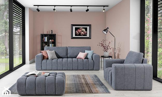 salon z szarą kanapą z funkcją spania