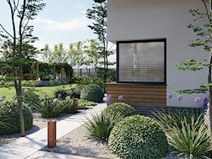 Ogród wypoczynkowy - zdjęcie od Kinga Madej architekt krajobrazu