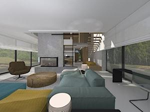 Dom jednorodzinny open-space