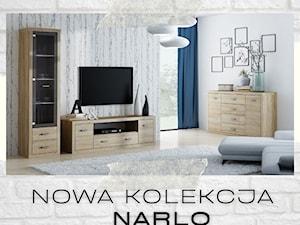Kolekcja mebli do salonu Narlo