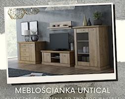 https://furnix.pl/mebloscianka-untical - zdjęcie od Furnix - nowoczesne meble - Homebook