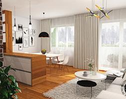 widok na salon z aneksem kuchennym i jadalnią - zdjęcie od KZPA - Homebook