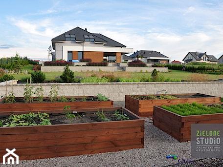 Aranżacje wnętrz - Ogród: Warzywnik w ogrodzie przydomowym - Zielone Studio Architektura Krajobrazu. Przeglądaj, dodawaj i zapisuj najlepsze zdjęcia, pomysły i inspiracje designerskie. W bazie mamy już prawie milion fotografii!