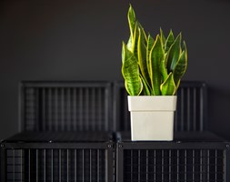 Szafki loftowe - detal - zdjęcie od Ameco Home & Living - Homebook