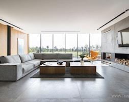 nowoczesny+salon+w+odcieniach+szaro%C5%9Bci+-+zdj%C4%99cie+od+TK+Architekci