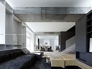 Dom kryształowy - zdjęcie od ANIEA - Andrzej Niegrzybowski architekt