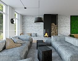 Salon%2C+cz%C4%99%C5%9B%C4%87+wypoczynkowa+-+zdj%C4%99cie+od+ANIEA+-+Andrzej+Niegrzybowski+architekt