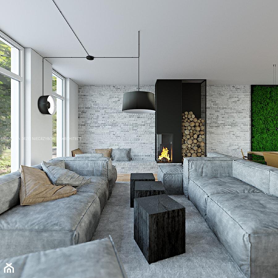 Salon, część wypoczynkowa - zdjęcie od ANIEA - Andrzej Niegrzybowski architekt