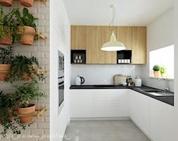Zdjęcie: Kuchnia