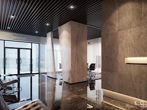 KOLA Studio Wizualizacje Architektoniczne - Artysta, designer