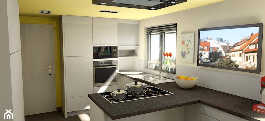 projekt kuchni zdj cie od palette cad. Black Bedroom Furniture Sets. Home Design Ideas