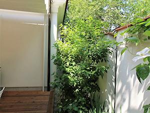 Prywatny ogród w barwach zieleni i bieli. - Średni ogród za domem - zdjęcie od ZAPROJEKTOWANA
