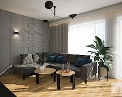 Nowoczesny dom z betonem - Salon, styl nowoczesny - zdjęcie od FRS ARCHITEKCI - Homebook