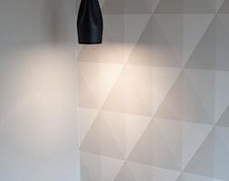 Salon+-+zdj%C4%99cie+od+Raca+Architekci