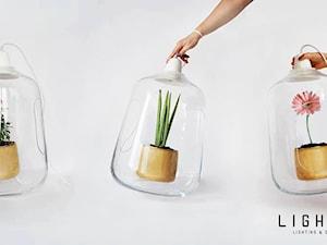 Lightovo - Artysta, designer
