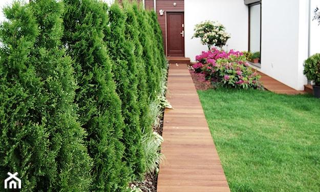 ścieżka ogrodowa drewniana