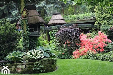 Ogród leśny – jak założyć i urządzić ogród leśny? Sprawdź porady i inspiracje