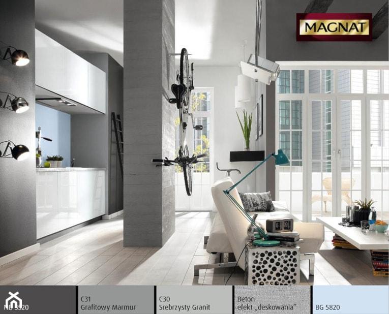 Aranżacje - Salon, styl nowoczesny - zdjęcie od Magnat Magia Szlachetnych Barw
