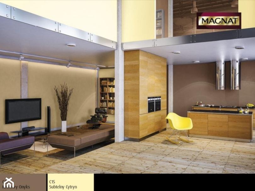 Aranżacje - Mały żółty salon z bibiloteczką z kuchnią, styl industrialny - zdjęcie od Magnat Magia Szlachetnych Barw
