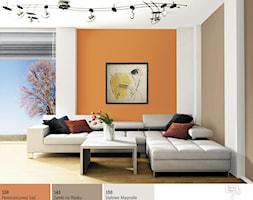Salon w jesiennej tonacji. - Mały szary biały pomarańczowy salon, styl nowoczesny - zdjęcie od Śnieżka