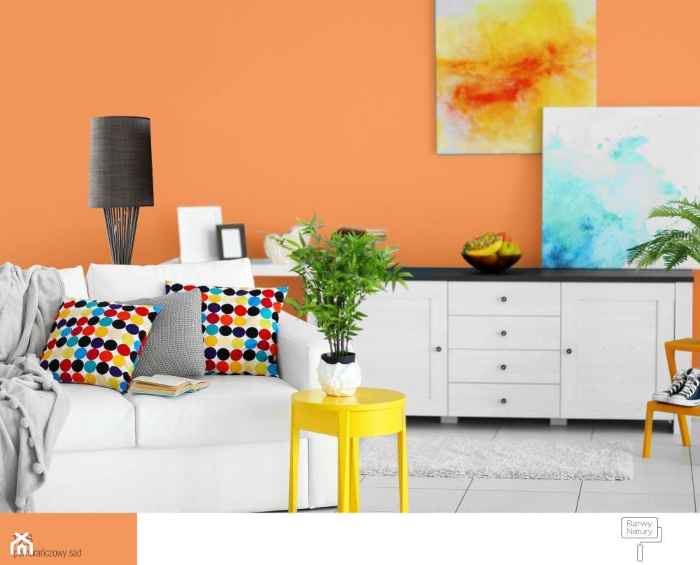 Pomarańczowy Kolor Wnętrz Dobór Odpowiedniego Odcienia