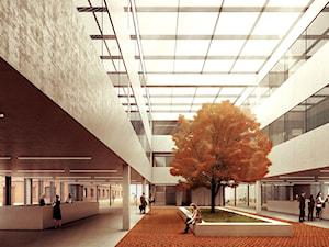 ostrowski architektura - Architekt budynków