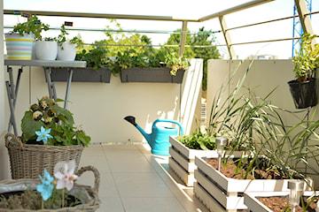 Najlepsze projekty balkonów w bloku