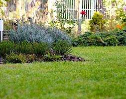 TOWN - Średni ogród za domem, styl klasyczny - zdjęcie od Landform