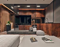 Salon+-+wizualizacja+KONZEPT+Architekci+-+zdj%C4%99cie+od+KONZEPT+Architekci