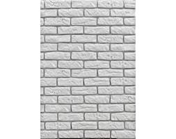 Kamień dekoracyjny i elewacyjny Loft Brick - biały