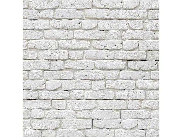 Kamień dekoracyjny i elewacyjny City Brick Off-White