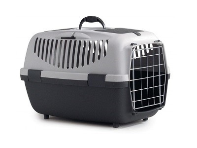 Torebki i transportery dla zwierząt – modne wyposażenie wnętrz na Homebook.pl