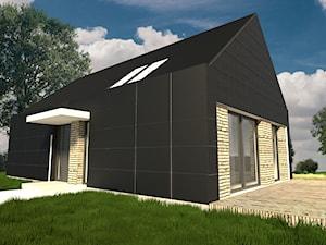 Projekt budynku mieszkalnego PU 68m2