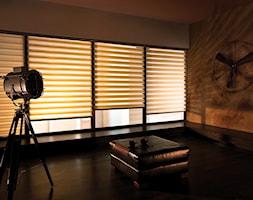 Rolety dzień noc - Salon - zdjęcie od ANWIS Sp. z o.o. - Homebook