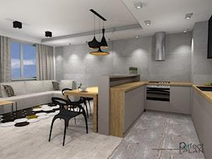 Mieszkanie z nutą loftu - Średnia otwarta szara kuchnia w kształcie litery u w aneksie z oknem, styl nowoczesny - zdjęcie od PerfectPLAN