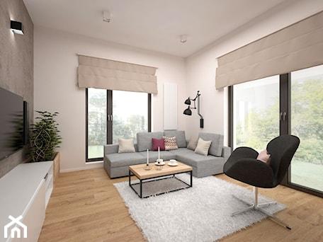 Aranżacje wnętrz - Salon: Projekt mieszkania 60 m2 / Kraków - Średni salon, styl minimalistyczny - BIG IDEA studio projektowe. Przeglądaj, dodawaj i zapisuj najlepsze zdjęcia, pomysły i inspiracje designerskie. W bazie mamy już prawie milion fotografii!