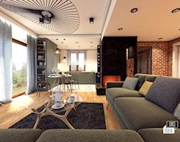 Projekt domu 45 m2 / Bochnia - Mały szary salon z kuchnią z jadalnią, styl eklektyczny - zdjęcie od BIG IDEA studio projektowe