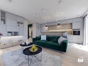 Projekt mieszkania 48,16 m2 / Kraków