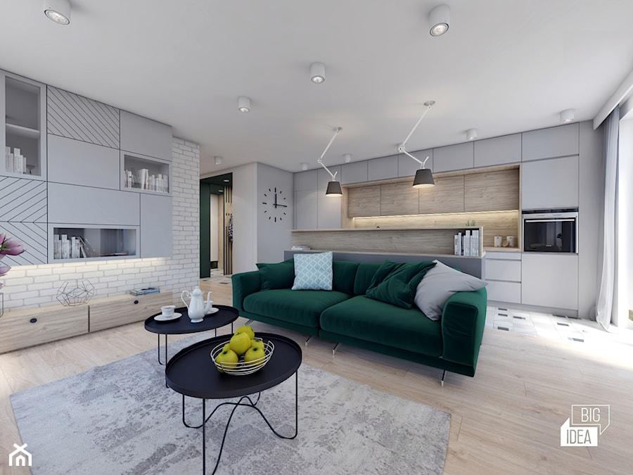 Projekt Mieszkania 4816 M2 Kraków średni Biały Salon Z