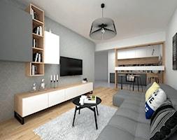 Projekt mieszkania 35 m2 / Kraków - Mały szary salon z bibiloteczką z kuchnią z jadalnią, styl skandynawski - zdjęcie od BIG IDEA studio projektowe